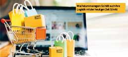 Online Handel - Herausforderung für die Logistik