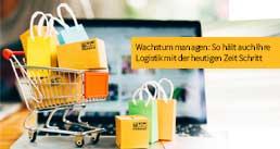 Online Handel - Den Wachstum managen