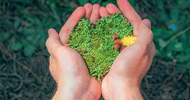 Integer Solutions erhält Umweltzertifikat